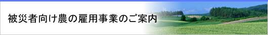 /www.yca.or.jp/html/koyou/main10.jpg